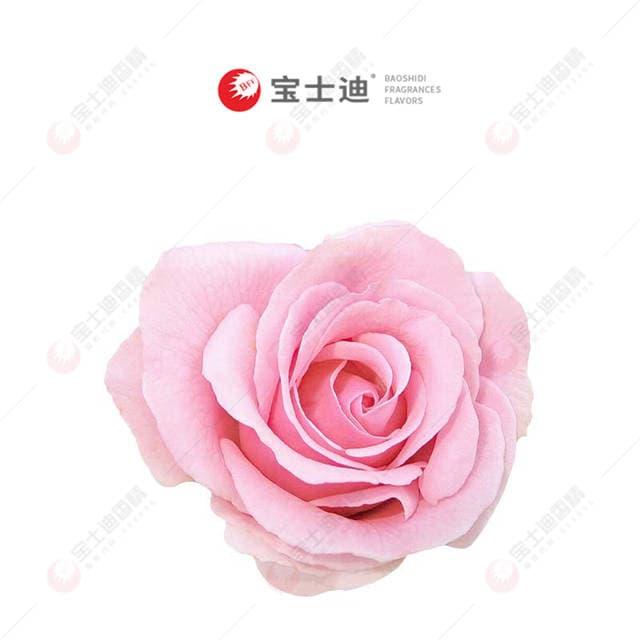 法国玫瑰yabo88